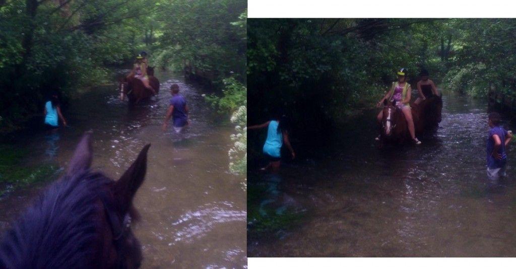 Vie in river 1&2